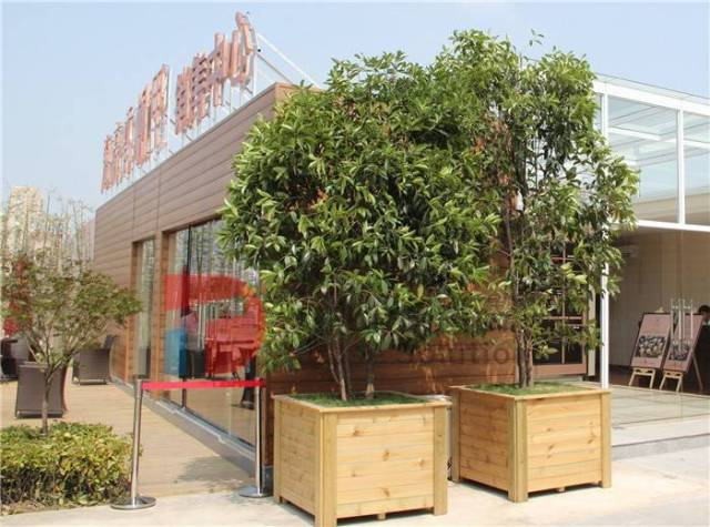 Container house market prospect